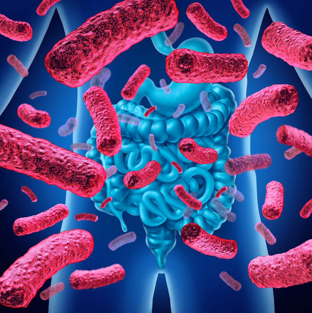 gut microbes- use mood boosting foods to feed your gut!
